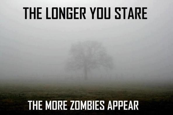 The longer you stare the more zombies appear! Now run!!!!